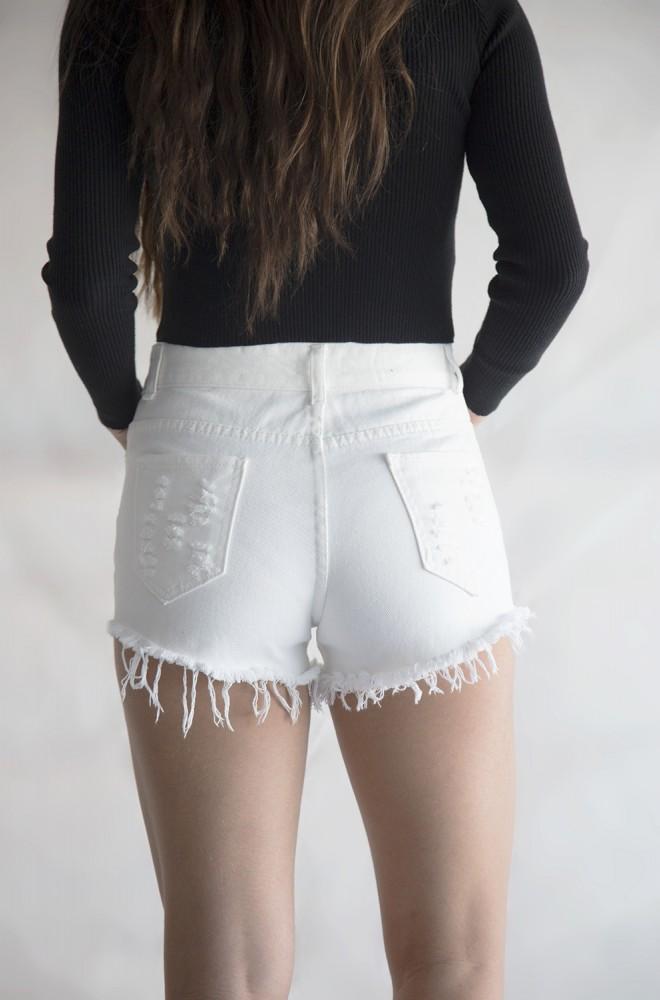 brooklyn high waisted shorts